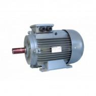 MOTOR MONOFAZAT 0.75KW 3000 RPM MD80 2A GAMAK